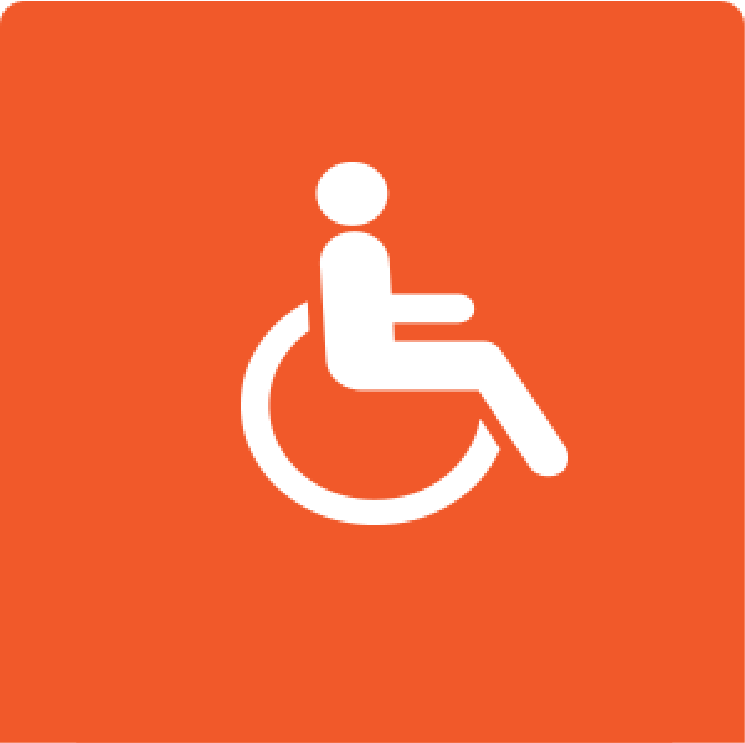 Disabled Visitors